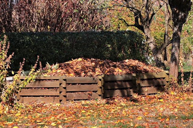 Podzim - vermikompost